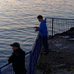 海釣り初心者の竿(ロッド)はシーバスロッドにすべし!万能でルアーもエサも対応!おすすめロッドをご紹介!